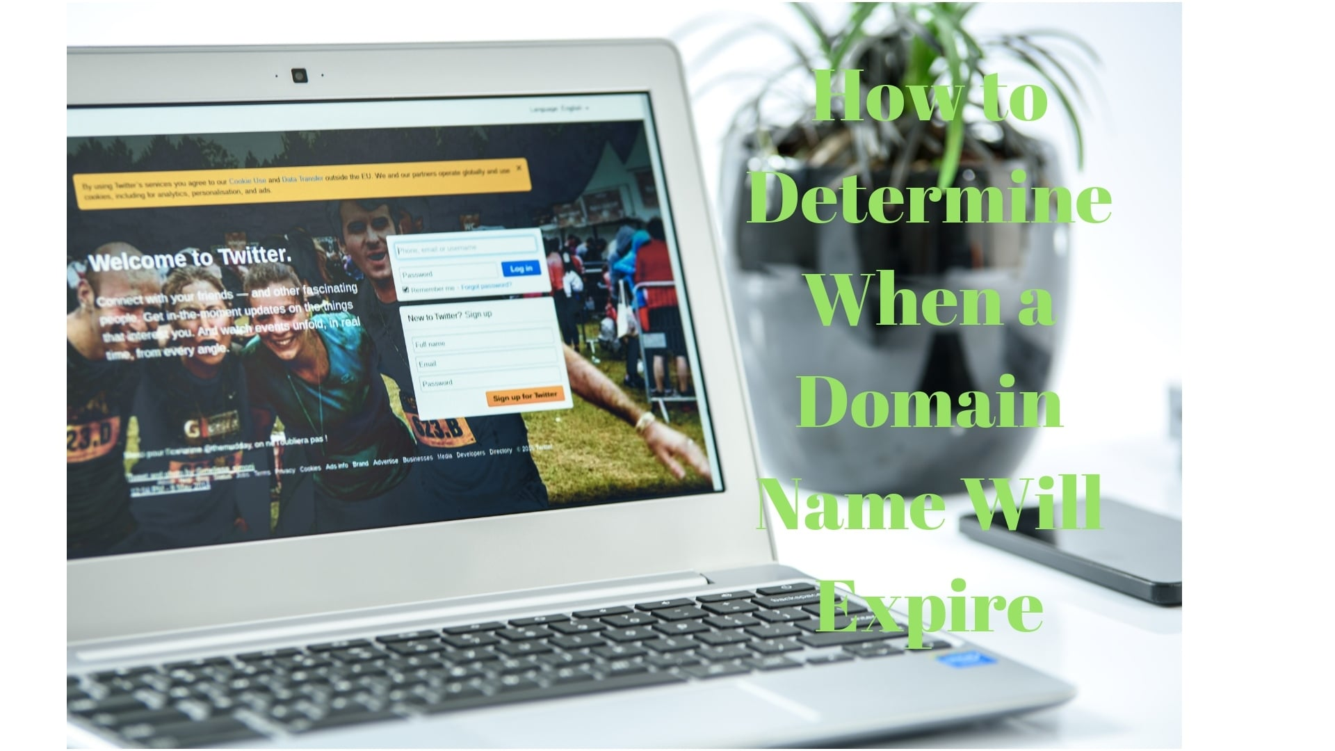 How to Determine When a Domain Name Will Expire 22