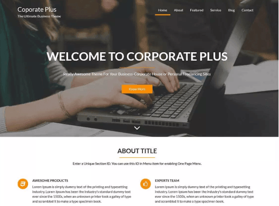 12 Best Responsive WordPress Themes (2019) 6
