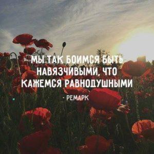 Фейковые цитаты