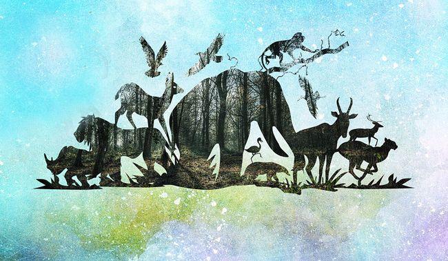 प्रकृति और जानवरों के बारे में 50 हैरान करने वाले तथ्य | Facts about Animal & Nature in Hindi