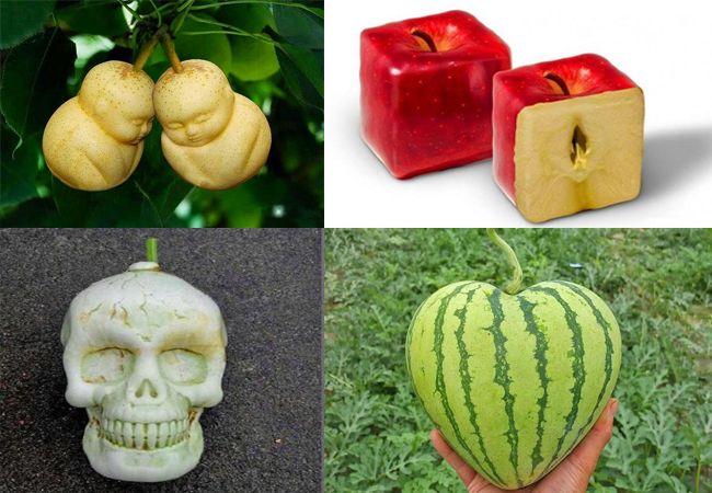 ऐसे दिया जाता है फलों और सब्जियों को मनचाहा आकार – Customized Shape Fruits