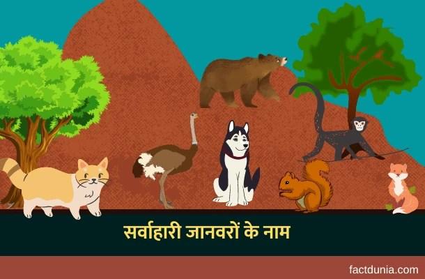 10 सर्वाहारी जानवरों के नाम हिंदी इंग्लिश में – Omnivores Animals Names in Hindi English