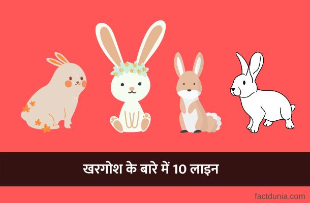 खरगोश के बारे में 10 लाइन – 10 sentences about rabbit in Hindi
