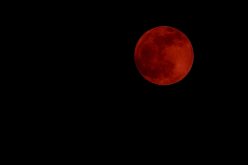 Blood 2014 Moon April