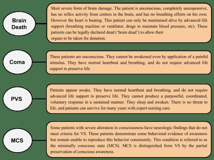 Criteria for being Permanent Vegetative State(PVS) - Aruna Shanbaug Euthanasia Case