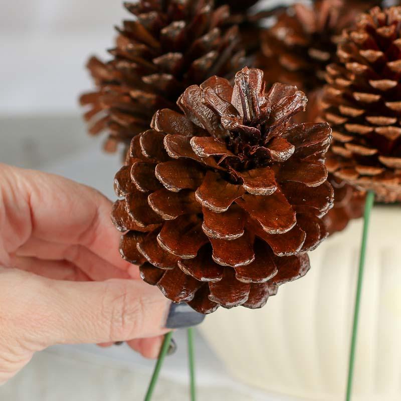 Natural Pinecone Picks Holiday Florals Christmas And