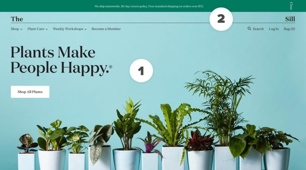 The Sill - Shopify Website for Plants
