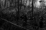 blackmetalwalpurgisnacht-0416