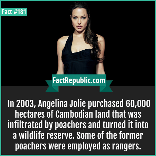 181. Angelina jolie-In 2003, Angelina Jolie purchased 60,000 hectares of Cambodian land that was infiltrated by poachers and turned it into a wildlife reserve. Some of the former poachers were employed as rangers.