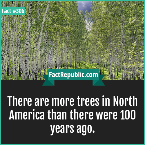 306. Northamerica-There are more trees in North America than there were 100 years ago.
