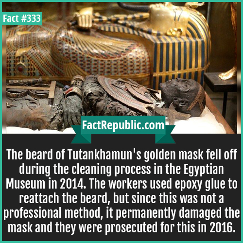 333. Tutankhamun-The beard of Tutankhamun's golden mask fell off during the cleaning process in the Egyptian Museum in 2014. The workers used epoxy glue to reattach the beard, but since this was not a professional method, it permanently damaged the mask and they were prosecuted for this in 2016.