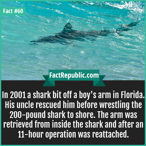 60. Shark-In 2001 a shark bit off a boy's arm in Florida. His uncle rescued him before wrestling the 200-pound shark to shore. The arm was retrieved from inside the shark and after an 11-hour operation was reattached.