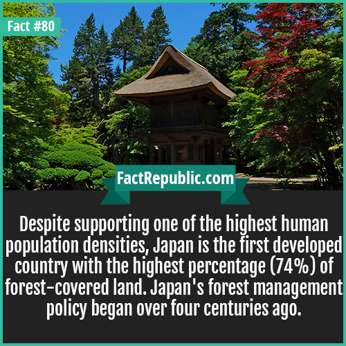 80. Tokyo Forest-Despite supporting one of the highest human population densities, Japan is the first developed country with the highest percentage (74%) of forest-covered land. Japan's forest management policy began over four centuries ago.