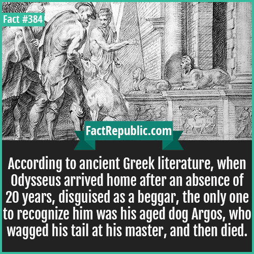 384. Odysseus-According to ancient Greek literature, when Odysseus arrived home after an absence of  20 years, disguised as a beggar, the only one to recognize him was his aged dog Argos, who wagged his tail at his master, and then died.