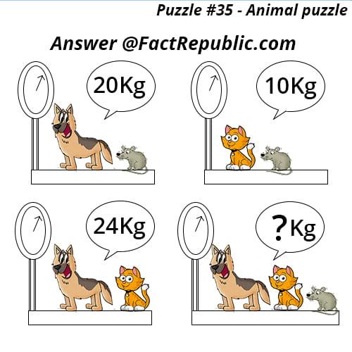 Puzzle #35 - Animal Puzzle