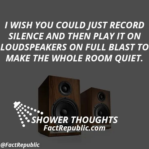 I wish you could just record silence and then play it on loudspeakers on full blast to make the whole room quiet.