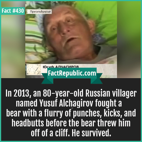 430-Yusuf bear fight-In 2013, an 80-year-old Russian villager named Yusuf Alchagirov fought a bear with a flurry of punches, kicks, and headbutts before the bear threw him off of a cliff. He survived.
