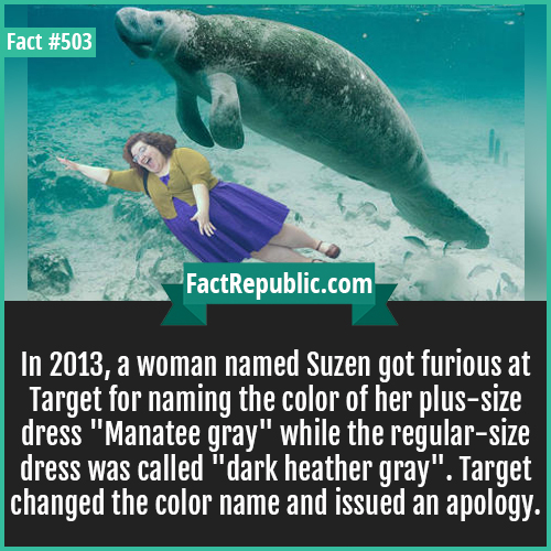 503. Wrong dress manatee gray-In 2013, a woman named Suzen got furious at Target for naming the color of her plus-size dress 'Manatee gray' while the regular-size dress was called 'dark heather gray'. Target changed the color name and issued an apology.