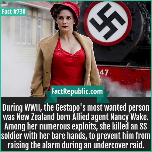 730. Nancy Wake-During WWII, the Gestapo's most wanted person was New Zealand born Allied agent Nancy Wake. Among her numerous exploits, she killed an SS soldier with her bare hands, to prevent him from raising the alarm during an undercover raid.