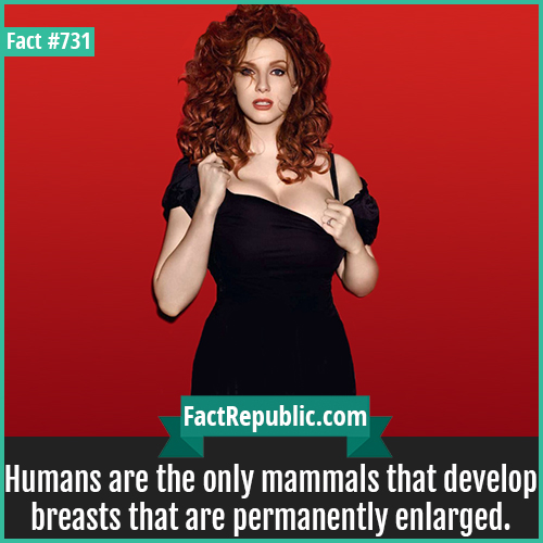 731. Christina Hendricks-Humans are the only mammals that develop breasts that are permanently enlarged.