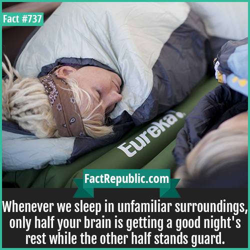 737. Sleep-Whenever we sleep in unfamiliar surroundings, only half your brain is getting a good night's rest while the other half stands guard.
