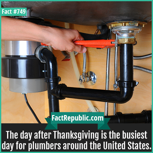 749. Thanksgiving Plumbing Problems-The day after Thanksgiving is the busiest day for plumbers around the United States.