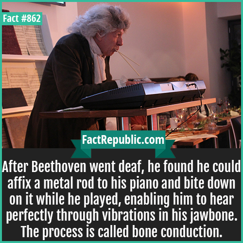 862. Beethoven Bone Conduction-After Beethoven went deaf, he found he could affix a metal rod to his piano and bite down on it while he played, enabling him to hear perfectly through vibrations in his jawbone. The process is called bone conduction.