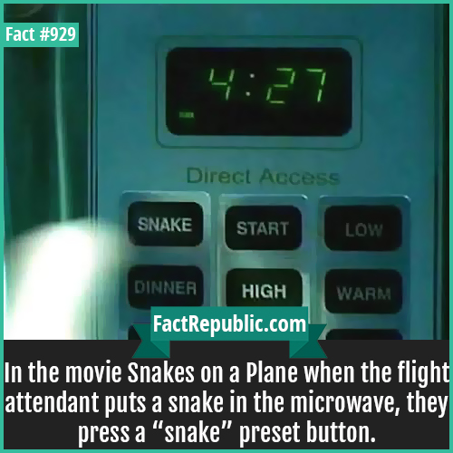 929. Snakes on a Plane-In the movie Snakes on a Plane when the flight attendant puts a snake in the microwave, they press a 'snake' preset button.