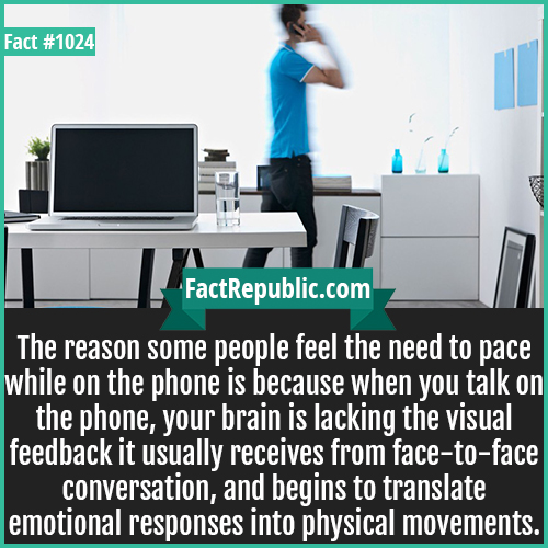 1024. Pacing while on Phone-The reason some people feel the need to pace while on the phone is because when you talk on the phone, your brain is lacking the visual feedback it usually receives from face-to-face conversation, and begins to translate emotional responses into physical movements.