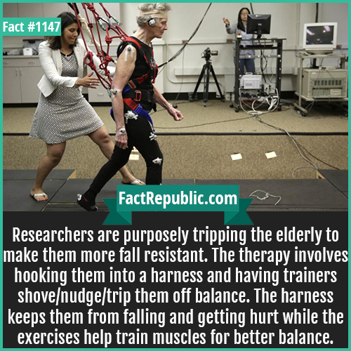 1147. Tripping Elders-Researchers are purposely tripping the elderly to make them more fall resistant. The therapy involves hooking them into a harness and having trainers shove/nudge/trip them off balance. The harness keeps them from falling and getting hurt while the exercises help train muscles for better balance.