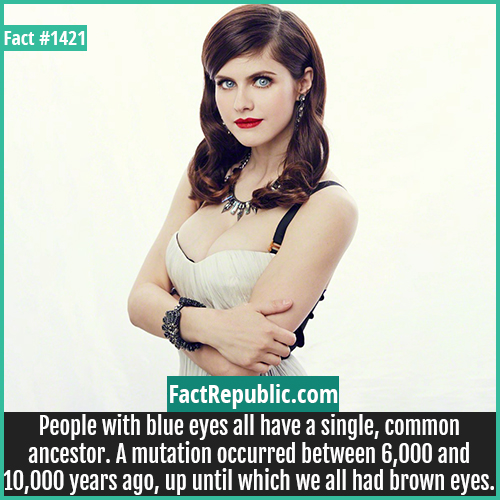 1421. Alexandra Daddario-People with blue eyes all have a single, common ancestor. A mutation occurred between 6,000 and 10,000 years ago, up until which we all had brown eyes.