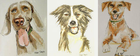 Watercolors of Dogs