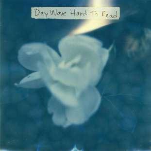 daywave1