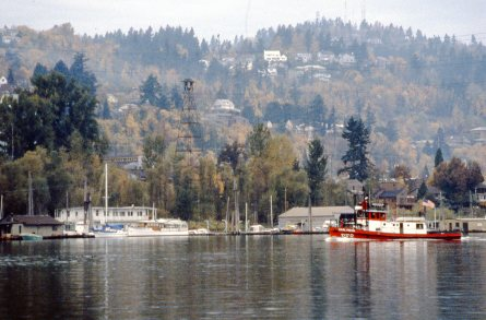 View from eastbank of Willamette River looking North at Sellwood Bridge, Fall. 1981