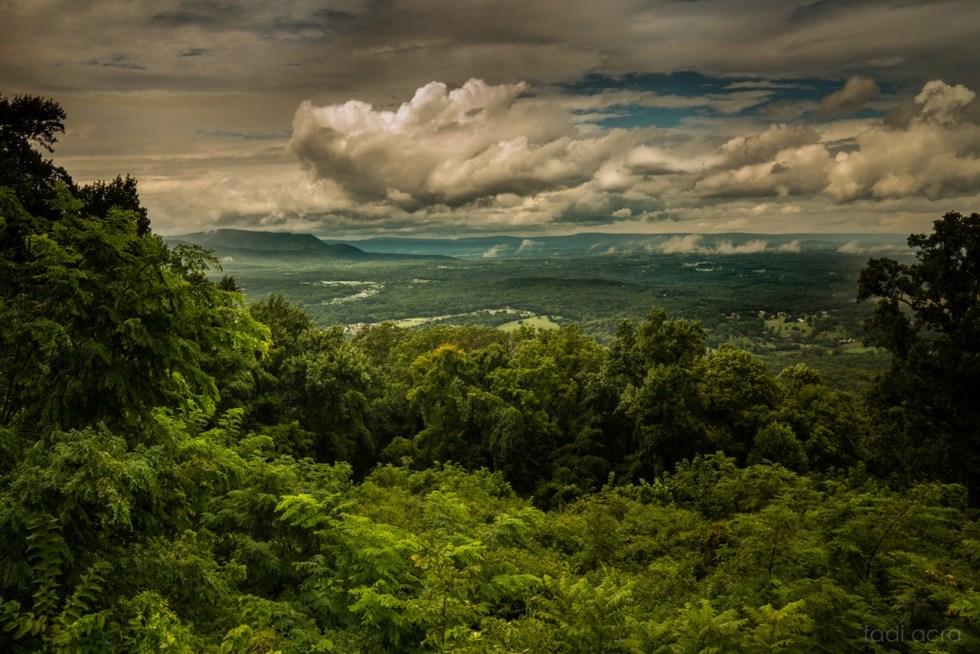 landscape photo of lush valley