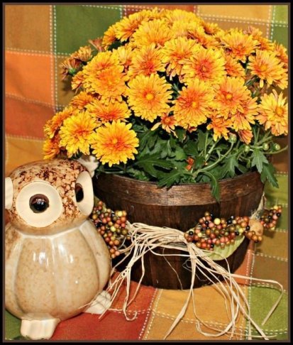 Basket, Fall, DIY, Home Decor, Staining