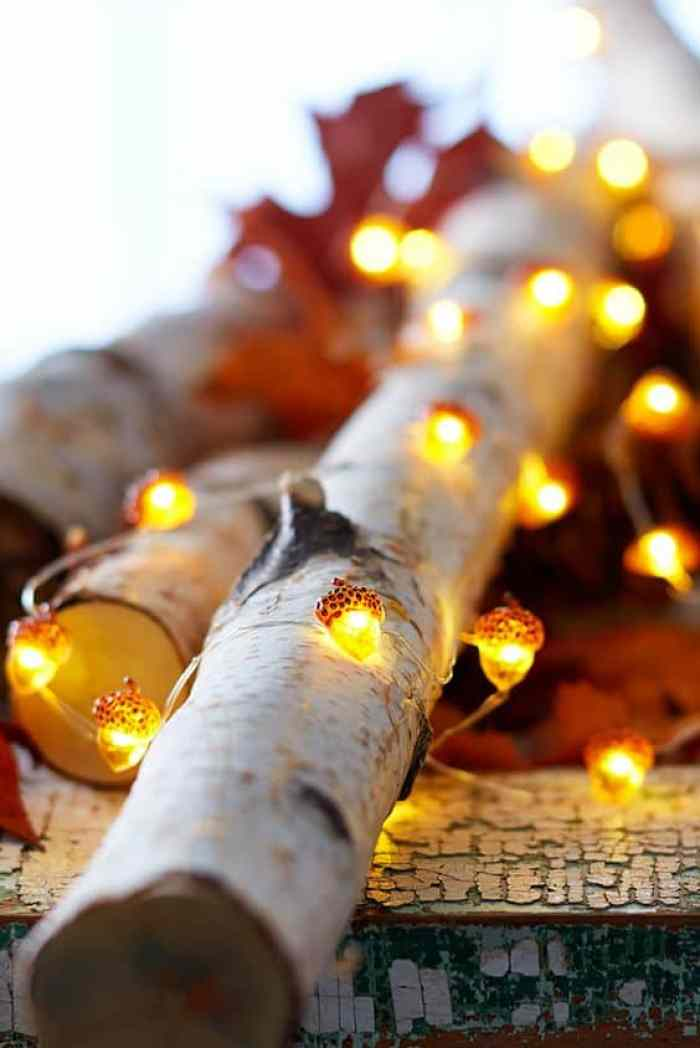 Fall decor ideas using lights. These ones are pretty acorn lights, beautiful for evenings.