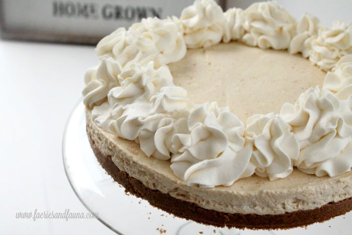 Pumpkin cheesecake recipe with whipped cream, cinnamon sugar and ginger crust.
