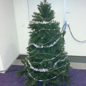 Kerstboom 3 meter