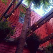 Trees, hanging planters, twinkle lights and bright red walls make the space seem special.
