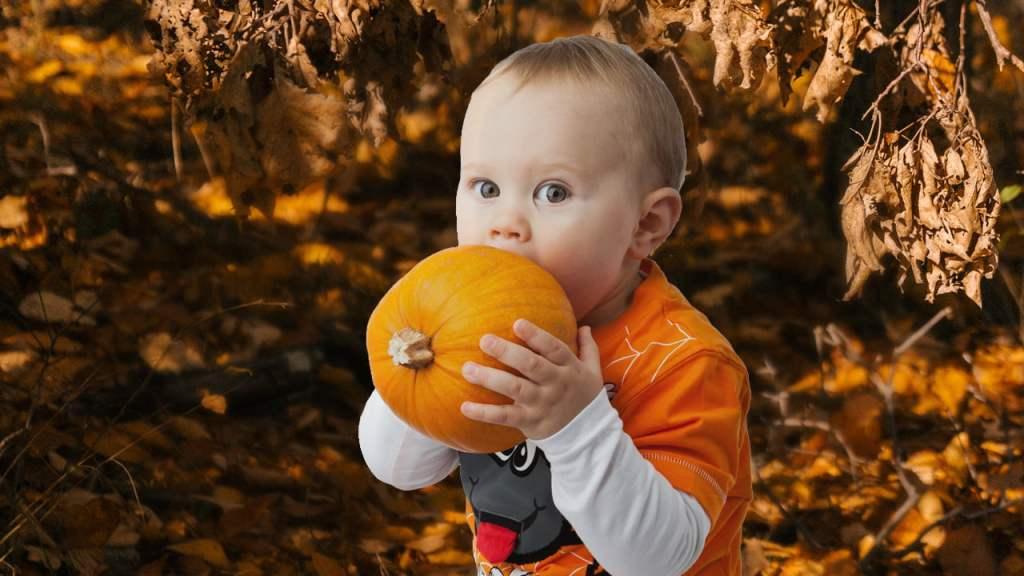 bebi hrana za bebe recept za bebe povrce2