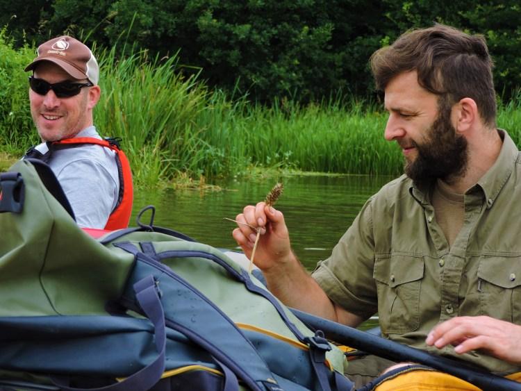 Wildpluk eetbare plant bespreken tijdens Wildpluk & Packraft met Rewilding