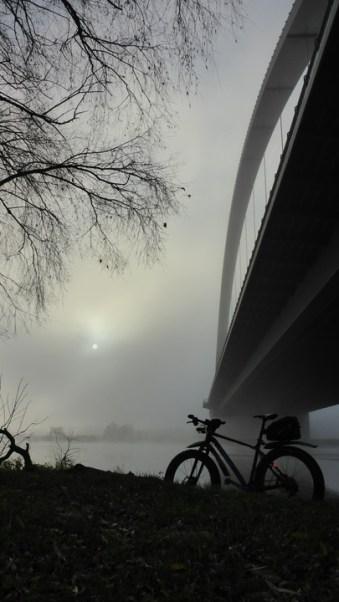nebel-sonne-571