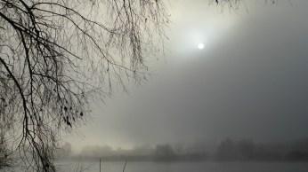 nebel-sonne-574