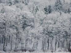 schnee-eis-jurasteig-31