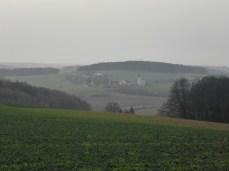 fruehling-im-winter-483