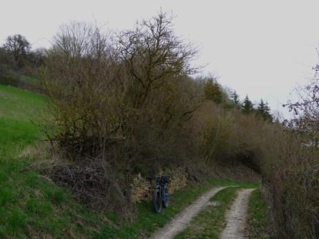 kagerer-weg-219