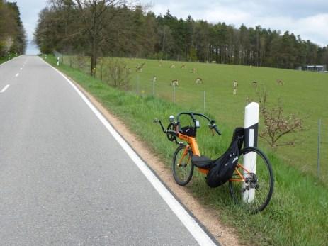 oberlichtenwald-57