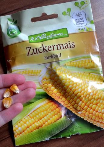 Saatgut Zuckermais Earlibird von 2015
