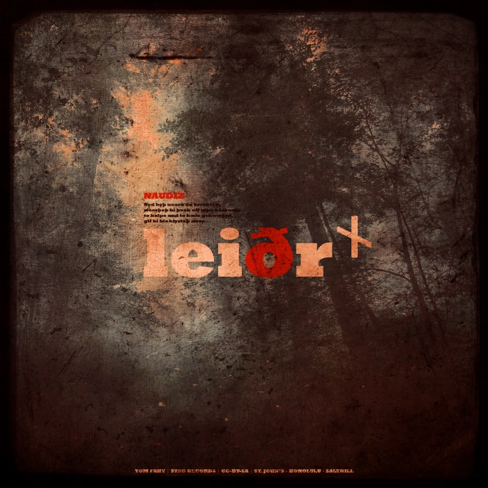 Leiðr, by Tom Fahy (2011)
